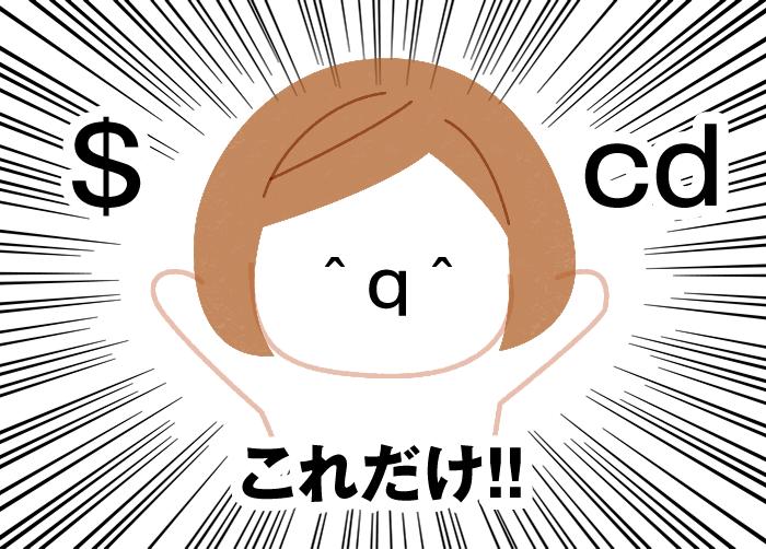 $とcdこれだけ!!